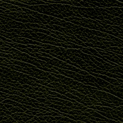 Image of the Olive sample by Claridge Upholstery